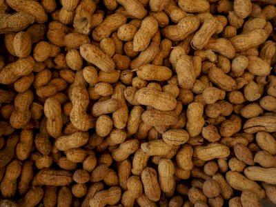Kacang Baik untuk Penderita Diabetes, Begini Aturan Mengonsumsinya