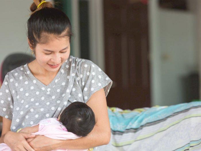Air Nabeez, Resep Asi Booster Alami untuk Ibu Menyusui