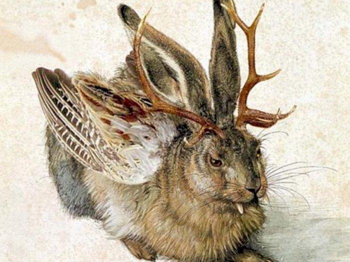 Kebenaran Jackalope, Kelinci Bertanduk Rusa yang Jadi Perdebatan