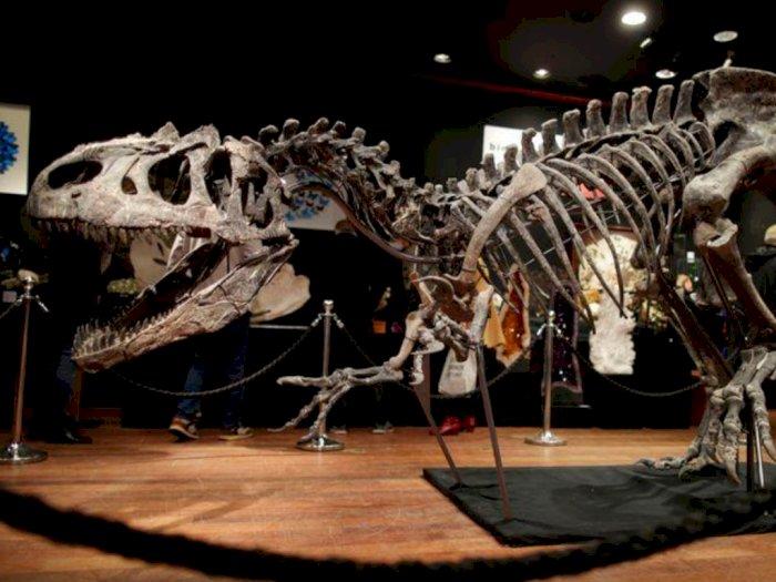 Kerangka Dinosaurus 150 Juta Tahun Dilelang, Laku Seharga $ 3,52 Juta