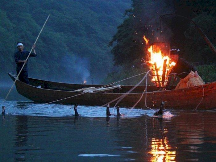 Tradisi Kuno Menangkap Ikan Bersama Burung Kormoran