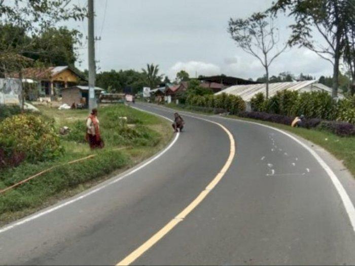 Ditabrak Mobil, Pemotor di Jalan Lintas Pematangsiantar - Saribu Dolok Tewas di Tempat