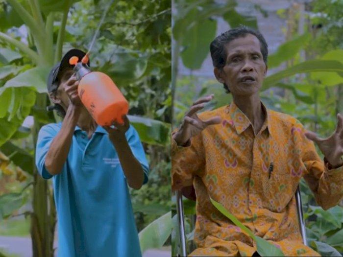 Mengenal Mbah Lasiyo, Petani Pisang  yang Viral Beri Tips Bikin Usaha