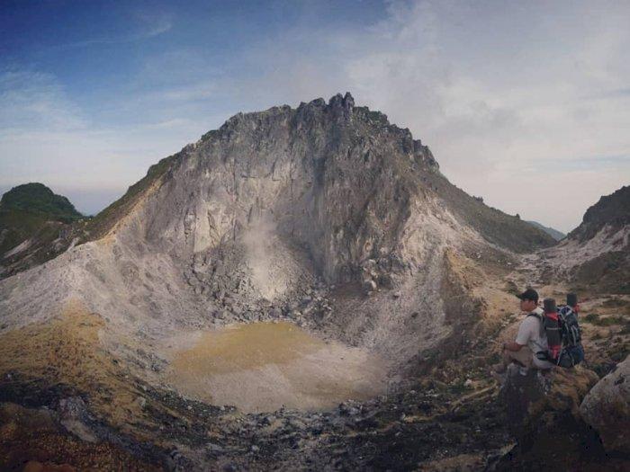 Dear Traveler, Harimau Sumatra Masih Berkeliaran, Jalur Pendakian Sibayak Resmi Ditutup