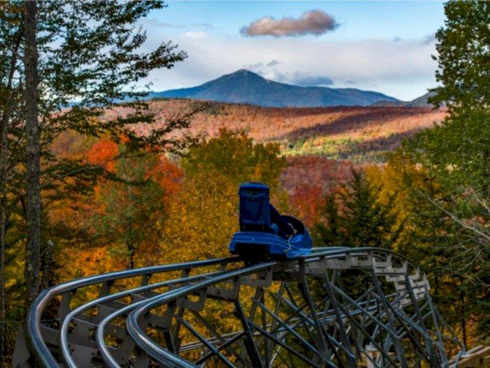Pacu Adrenalin, New York Hadirkan Mountain Coaster Terpanjang di Amerika