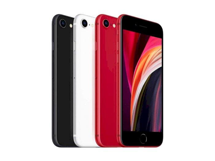 iPhone SE Generasi Terbaru Diprediksi Baru akan Hadir di Tahun 2022