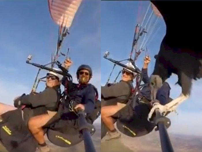Lagi Nikmati Alam dengan Paralayang, Dua Pria ini Disamperin Burung yang Numpang Istirahat