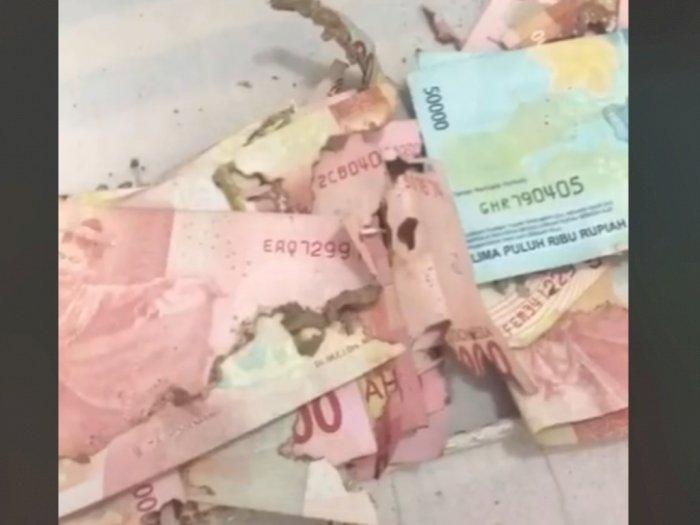 Viral, Niat Beri Kejutan Umrah untuk Orangtua, Ternyata Uang Tabungan Rusak Dimakan Rayap