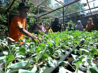 FOTO: Edukasi Pertanian dan Perikanan di Sanggar Jonggring Saloka