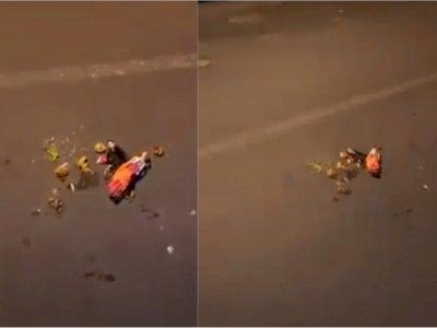 Heboh Penemuan Boneka Bertabur Bunga di Jalanan Malam Hari, Diduga Pesugihan Minta Tumbal