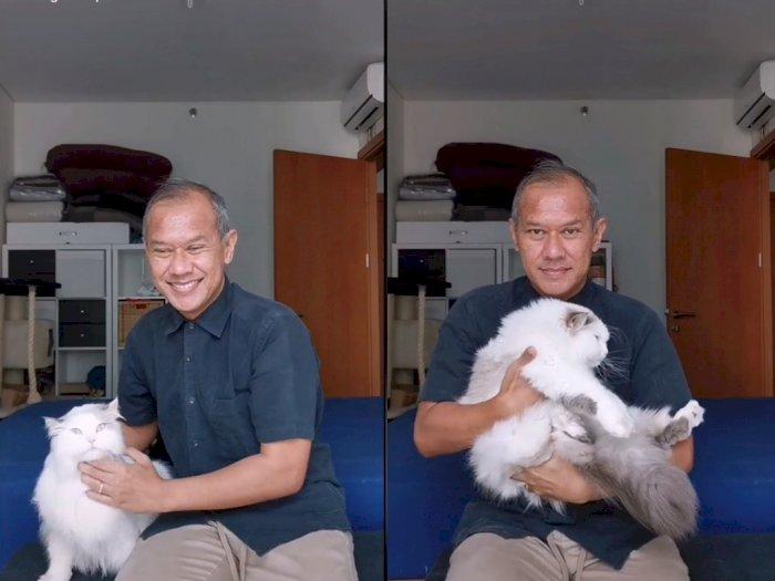 Harus Dilakukan Dengan Benar, Pria ini Beri Tips Cara Gendong Kucing Supaya Nyaman