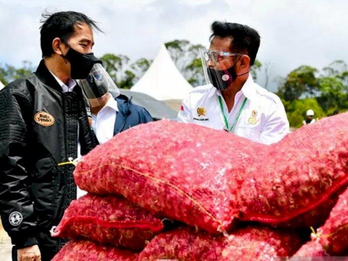 Mentan: 'Food Estate' di Humbahas Jadi Contoh Korporasi Hortikultura