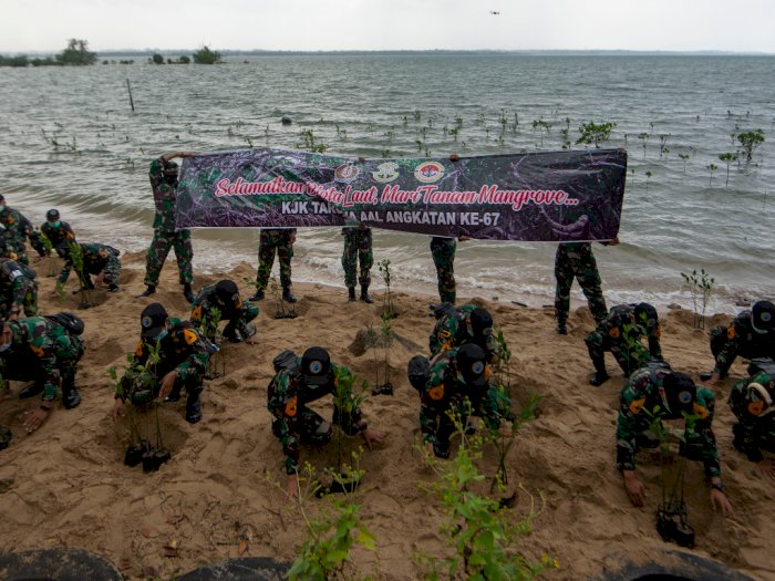 FOTO: Aksi Taruna AAL Tanam Bakau di Bintan