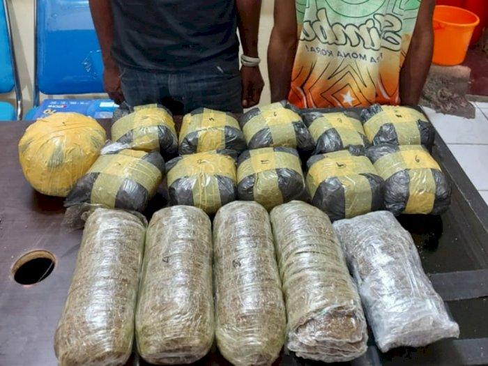 Simpan 3,8 Kg Ganja di Atas Plafon, 2 WN Papua New Guinea Diciduk Polisi