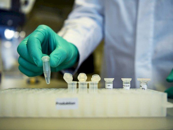 Masih Berjalan, Izin Edar Vaksin Merah Putih Diharapkan Awal 2022