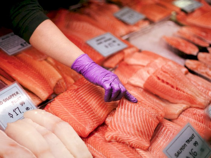 Dari Mulai Kandungan Nutrisi Ikan Salmon dan Tuna Hingga Manfaatnya Bagi Kesehatan