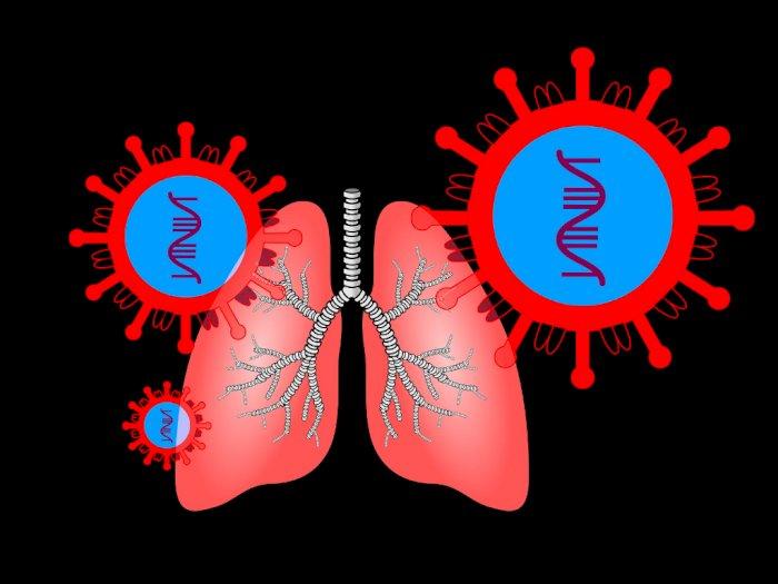 3 Vitamin Ini Membantu Menjaga Kesehatan Paru-paru