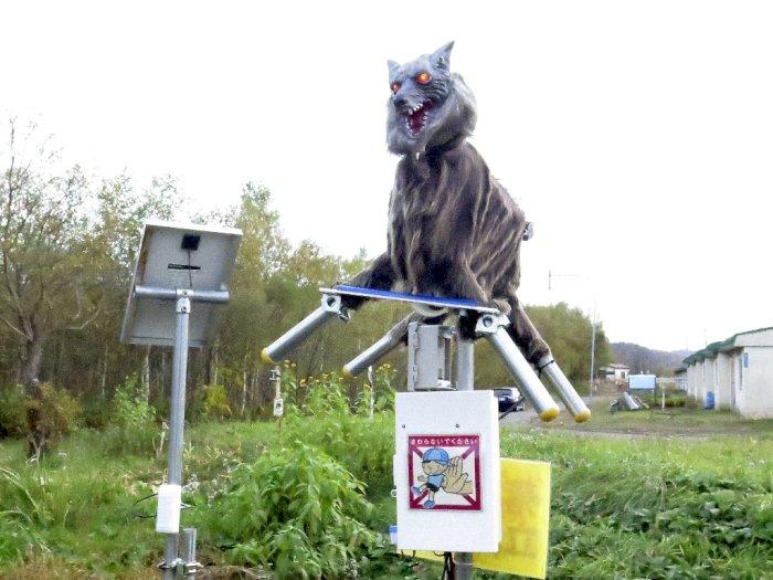 Kota di Jepang Ini Gunakan Robot Serigala untuk Selamatkan Penduduk dari Serangan Beruang!