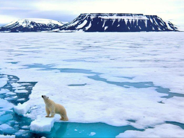 Studi: Samudra Arktik Kemungkinan akan Alami Musim Panas Tanpa Es Sebelum 2050