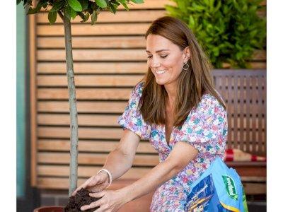 Kate Middleton Tampil dengan Rambut Baru yang Cukup Berani