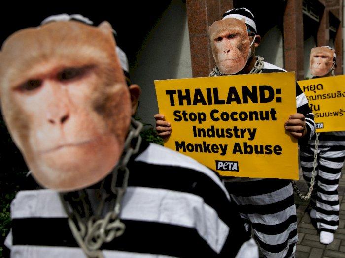 FOTO: Unjuk Rasa Memprotes Eksploitasi Monyet