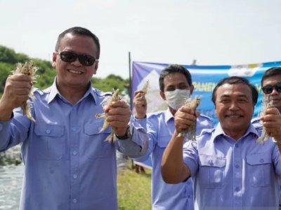 Apa Itu Benur? Penyebab Menteri KKP Edhy Prabowo Ditangkap KPK