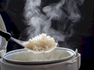 Penasaran? Ini Cara Rice Cooker Menanak Nasi Tanpa Gosong
