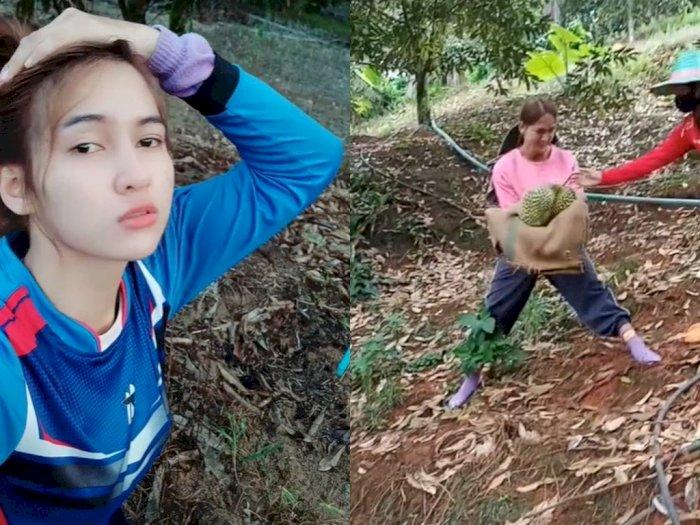 Momen Cewek Cantik Tangkap Durian dari Atas Pohon, Bikin Cowok Degdegan!