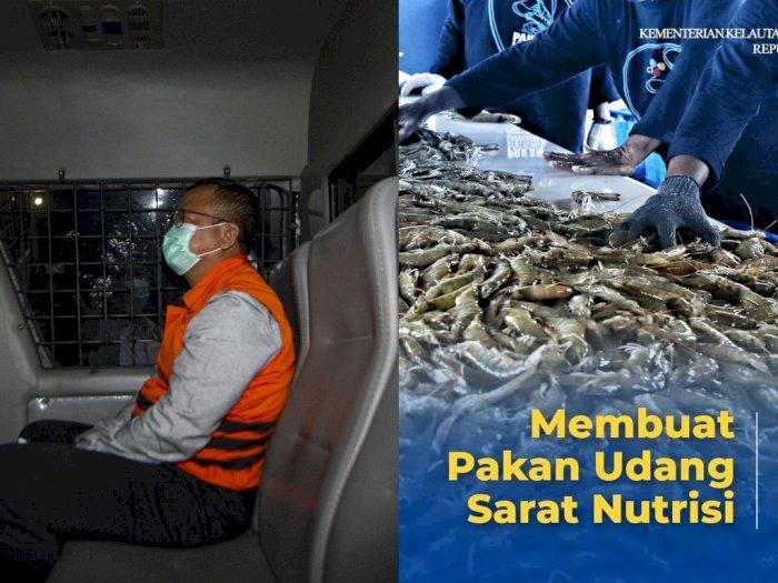 KKP Beri Tips Bikin Pakan Udang Sarat Nutrisi, Netizen Malah Sibuk Tanya Edhy Prabowo