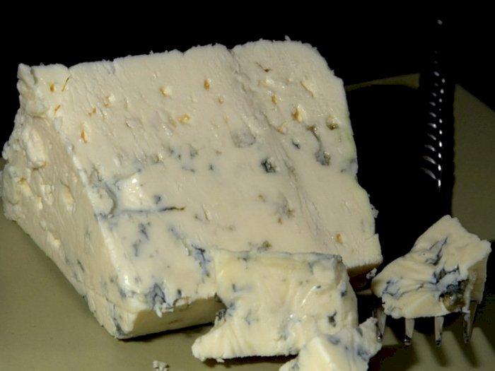 Blue Cheese Aman Dikonsumsi? Ini Penjelasannya