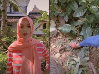 Video Cewek yang Sebut Bunga Di Depan Rumahnya Sampah & Diinjak-injak, Bikin Netizen Geram