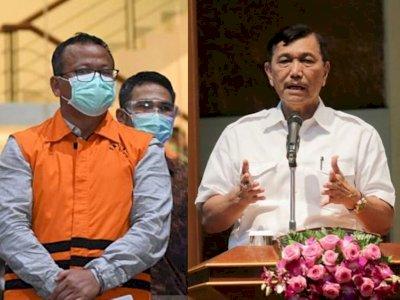 Edhy Prabowo Ditangkap, Luhut Pandjaitan: Tidak Ada yang Salah dengan Regulasi Lobster