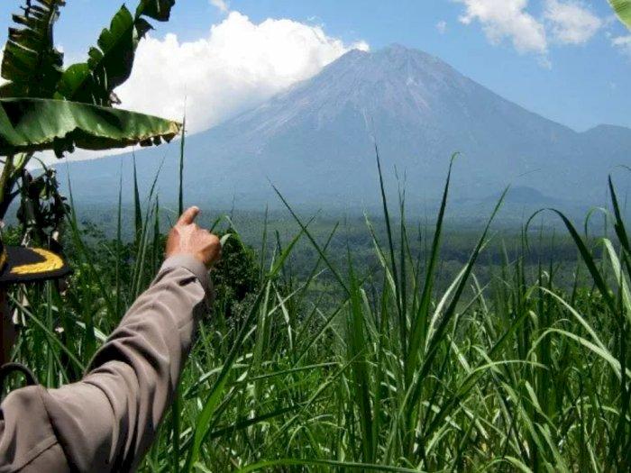Gunung Semeru Semburkan 4 Kali Guguran Lava Pijar