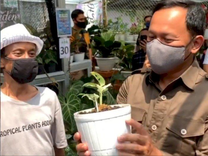 Janda Bolong Dibandrol Rp 80 Juta, Bima Arya Terkejut: Wah Ini Gaji Wali Kota Berapa Tahun