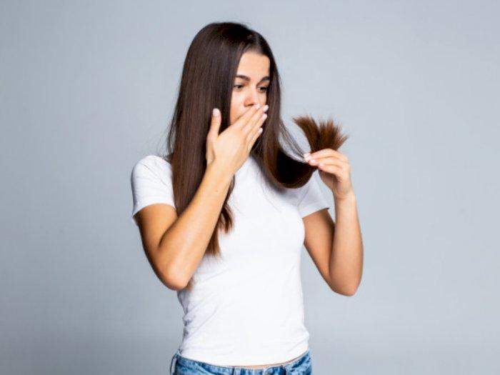 3 Bahan Alami untuk Mencegah Penipisan Rambut