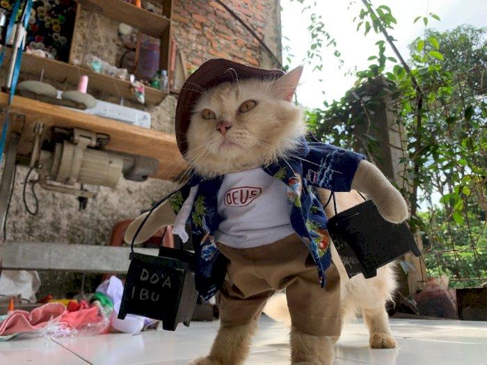 FOTO: Lucunya Cosplay Kucing di Bogor