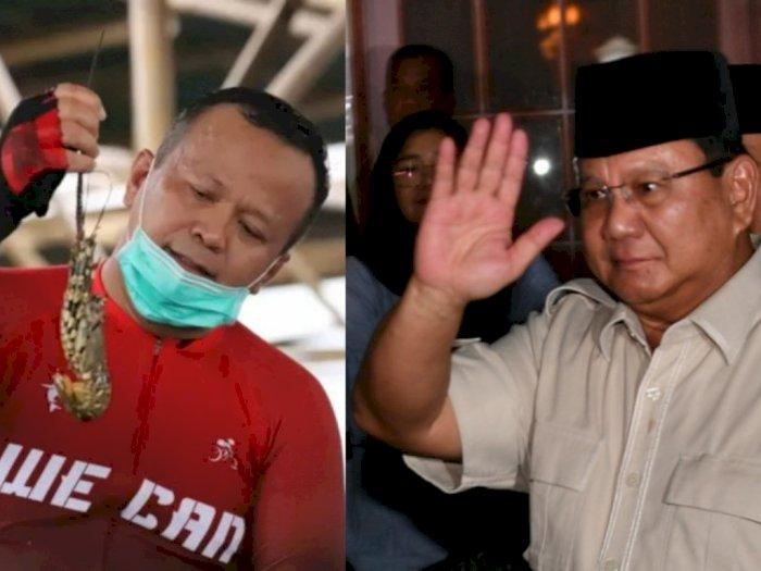Ungkap Kekecewaan, Hashim Kutip Ucapan Prabowo Subianto: Edhy Diangkat dari 'Selokan'