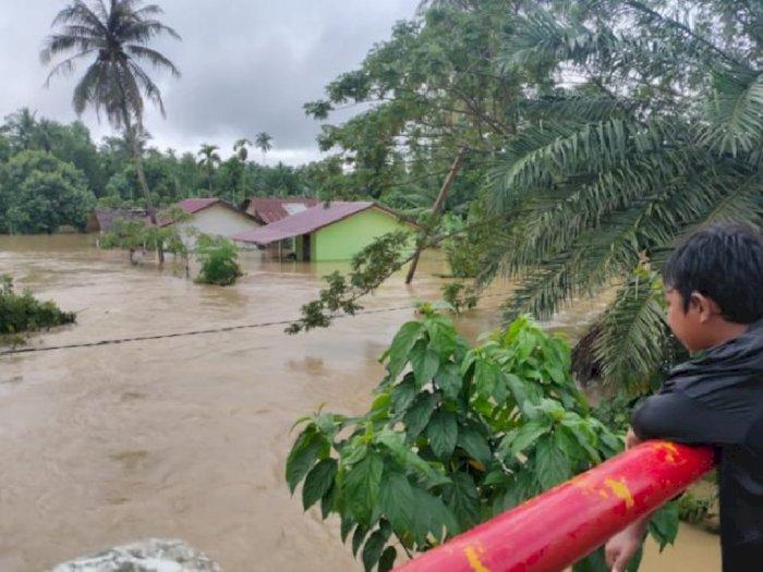Banjir 1,5 Meter Rendam Rumah dan Lahan Pertanian Warga di Aceh Utara