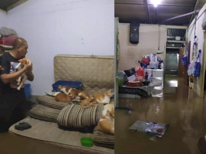 Rumah Direndam Banjir, Kakak-Adik 'Bucing' Ini Selamatkan 32 Kucingnya Lebih Dulu