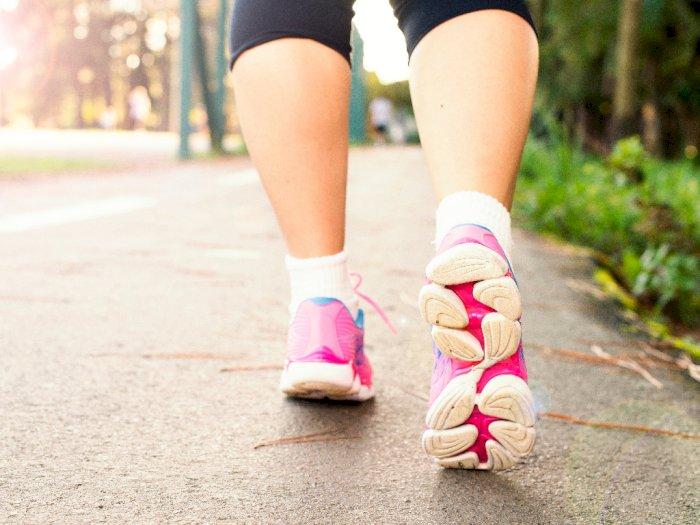 Semua yang Harus Kamu Ketahui Tentang Menurunkan Berat Badan dengan Berjalan Kaki