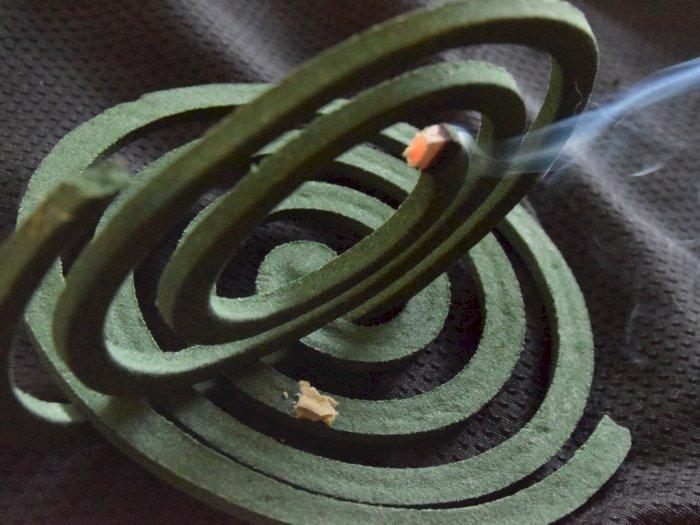 Sejarah Obat Nyamuk Bakar Berbentuk Spiral, Bukan Cuma Mode!