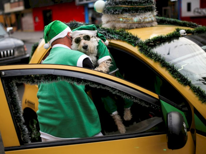 Cara Sopir Taksi di Kolombia Meriahkan Natal, Ajak Anjingnya Keliling Kota Berkostum Santa