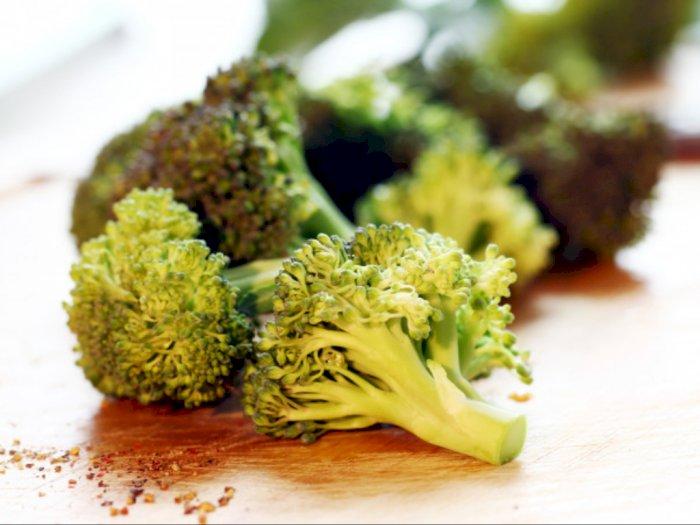 Begini Cara Menyimpan Brokoli Supaya Tahan Lama
