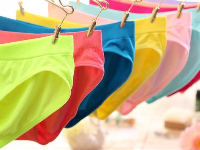 Komplotan Pencuri Pakaian Diamankan Petugas, 171 Potong Celana Dalam jadi Barang Bukti