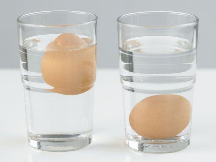Benarkah Telur Yang Mengapung di Atas Air Artinya Telur Busuk?