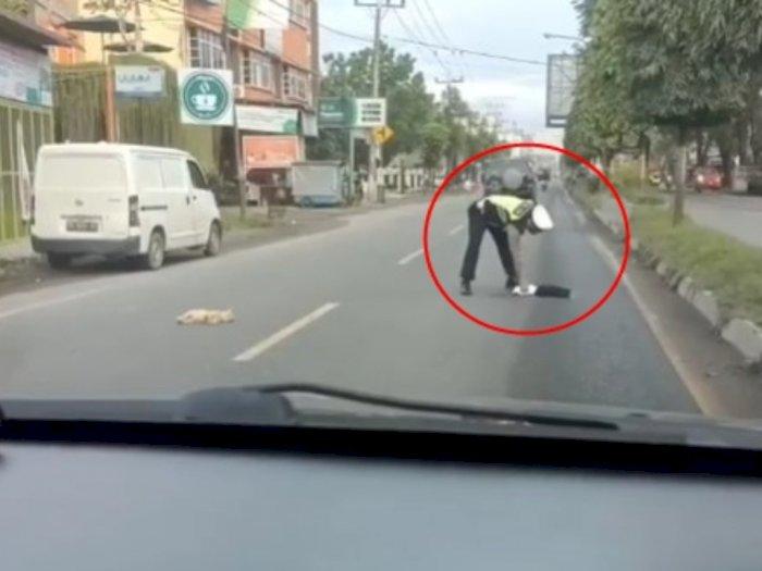 Aksi Polisi Pindahkan Dua Kucing yang Mati Tertabrak di Tengah Jalan, Netizen Ikut Sedih
