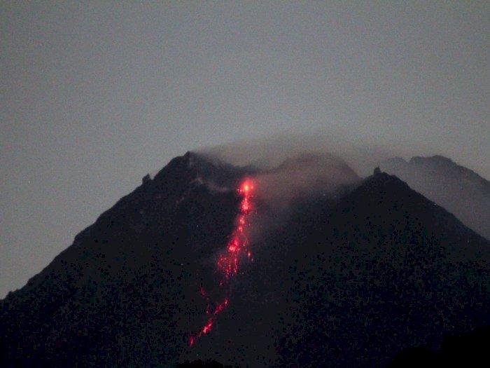 Jangka Waktu 6 Jam, Gunung Merapi Keluarkan Guguran Lava Pijar 9 Kali