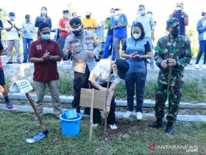 Ciptakan Keasrian Labuan Bajo, Pemkab Manggarai Barat Tanam 5.000 Pohon Flamboyan