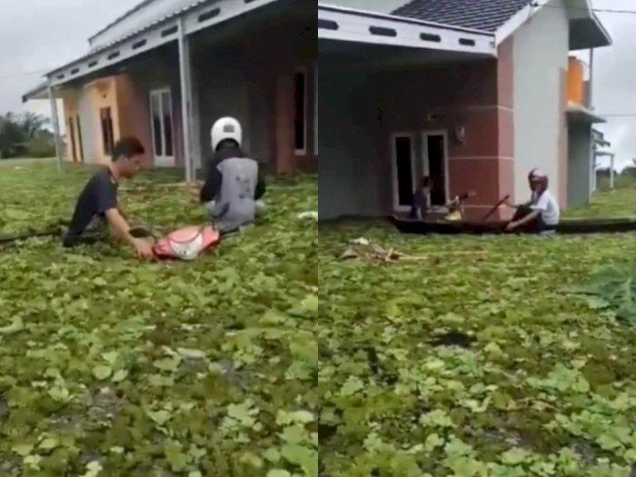 Banjir Besar di Kalsel, Perumahan Ini Mendadak Dipenuhi Eceng Gondok