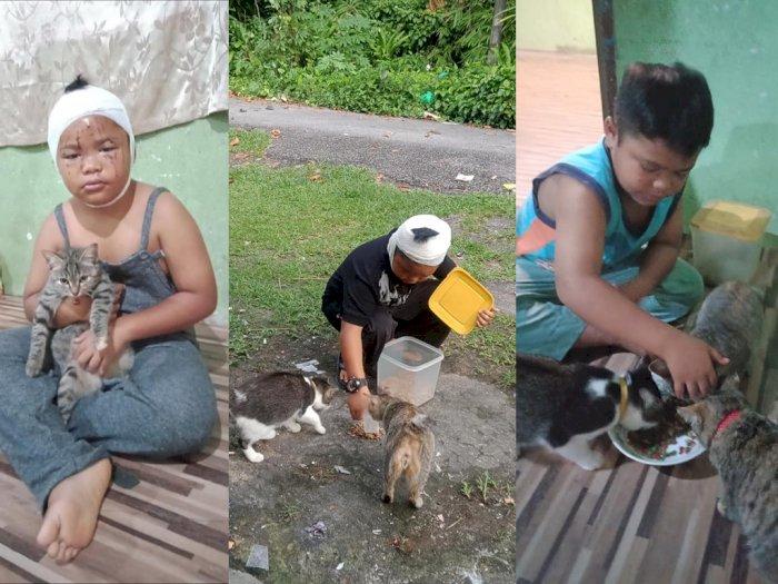 Kisah Bocah yang Wajahnya Berdarah Dicakar Kucing, Tapi Tetap Sayang